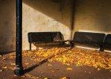 Jesmond Dene Shelter : Lynn Kerr