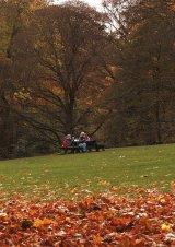 Autumn Picnic : Val Atkinson