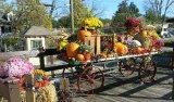 3rd Autumn Fruits : Ray Mckenna