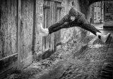 Com Val Atkinson : Jump.VanHalen