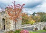 Com Warkworth Tower & Bridge : Joan Robinson
