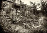 Com An Artists Garden : Harry Wilkinson
