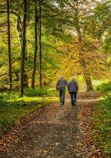 HC The Autumn Of Life : John Twizell