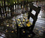 Too Wet to Sit On