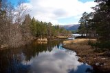 Towards Loch Morlich