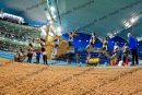 KJT long jump - Copyright