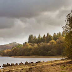 Burrator Reservoir And Down Tor