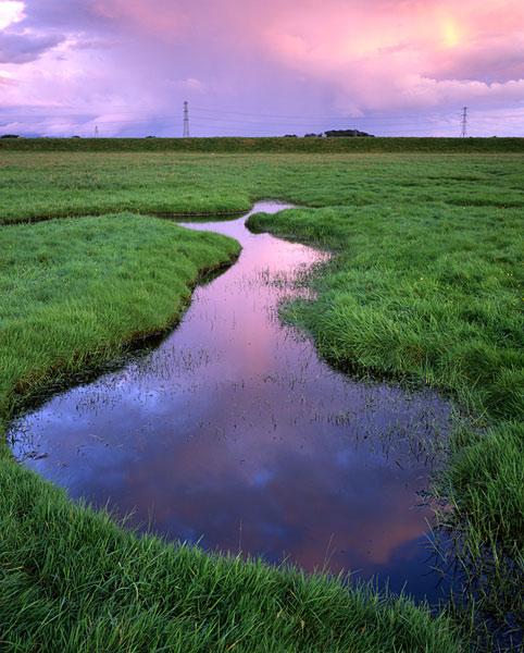 Passing Rain, Longton Marsh