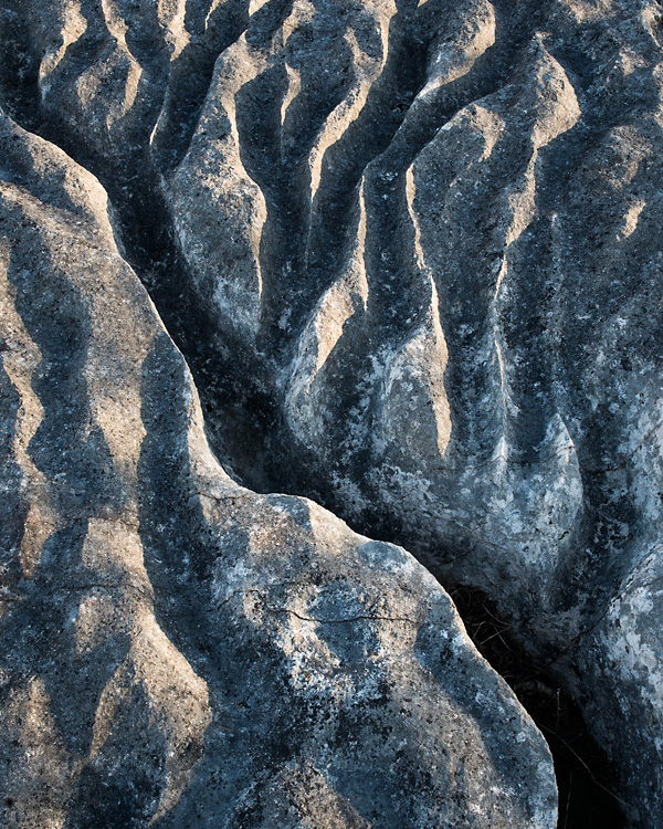 Limestone Detail, Lancelot Clark Storth