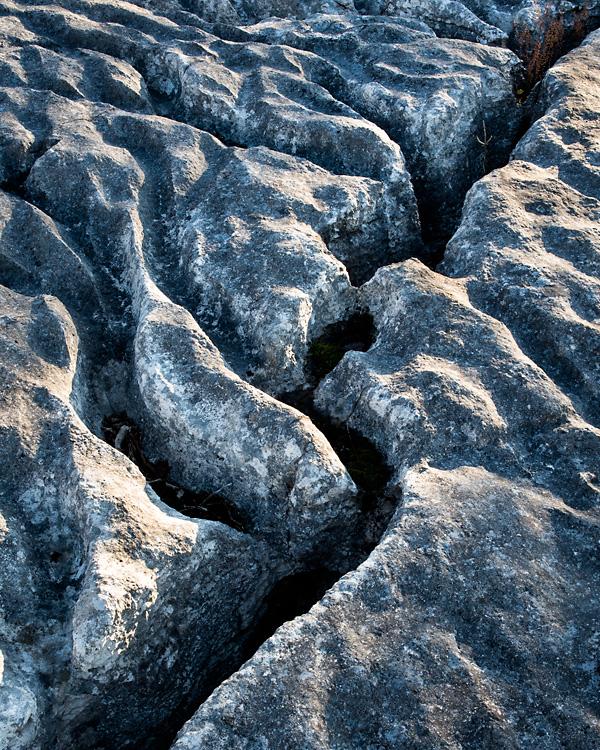 Limestone Detail 03, Lancelot Clark Storth