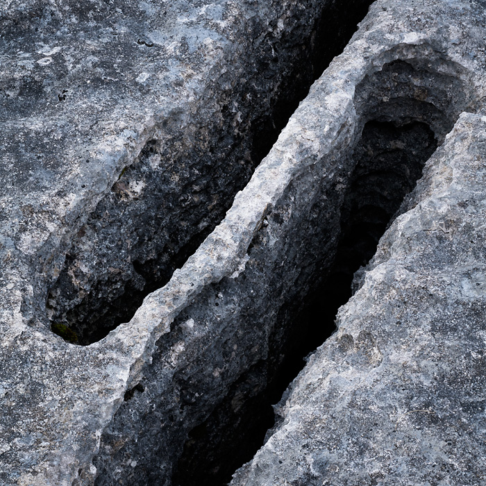Limestone, Lancelot Clark Storth 04