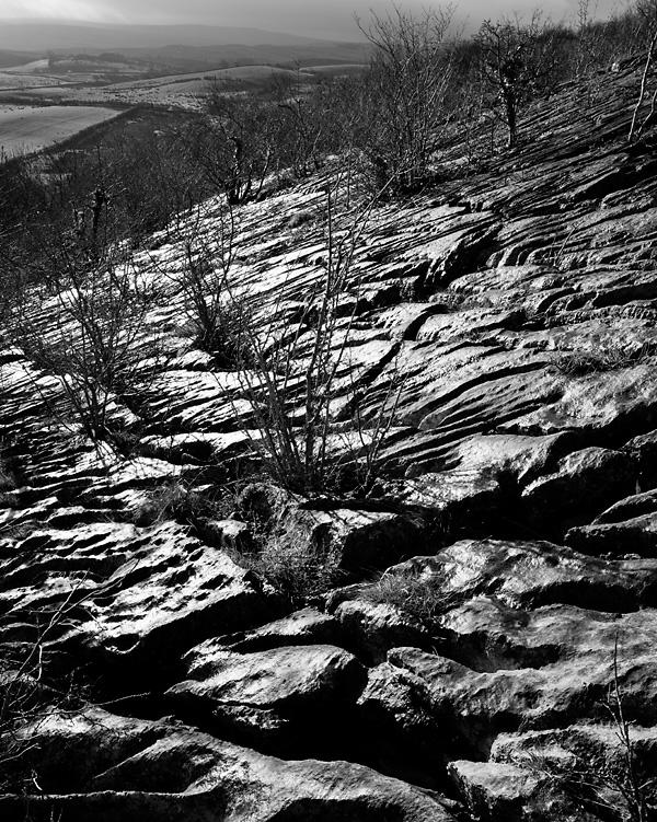 Wet Pavement, Hutton Roof Crags