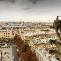A view from Notre Dame, Paris