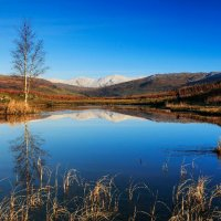 Lilly Tarn, Loughrigg Fell