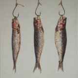 Three Hanging Sardines