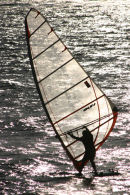 Windsurfing on a Shimmering Sea