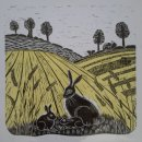 Hares in the Summer