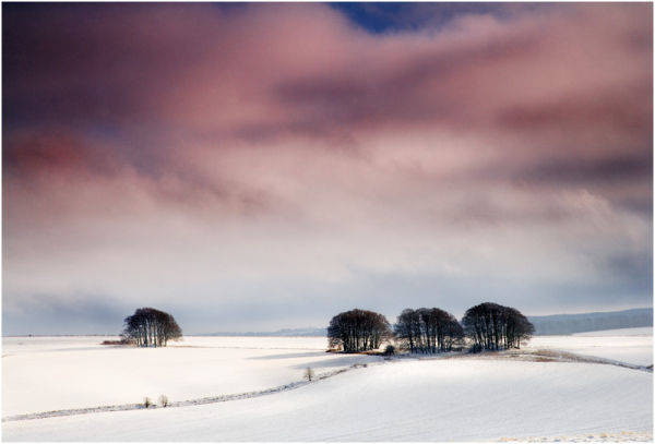 C A Winter's Tale