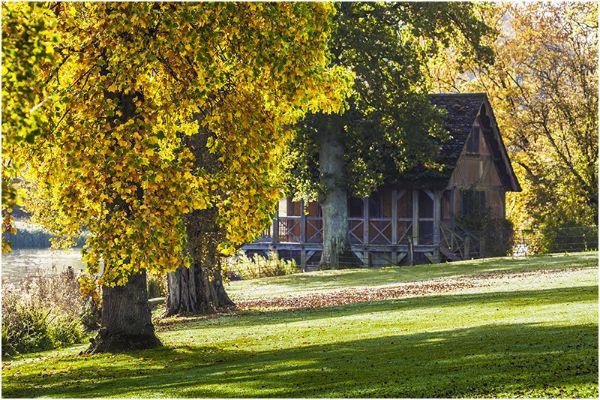 Autumn 47