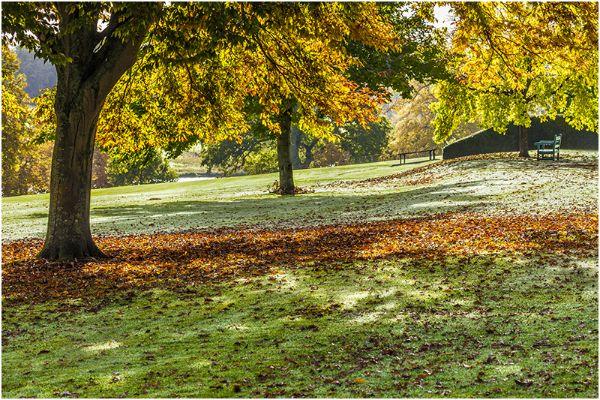 Autumn 48