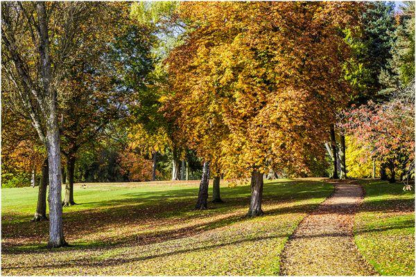 Autumn 59
