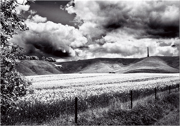 White Horse and Lansdowne Monument