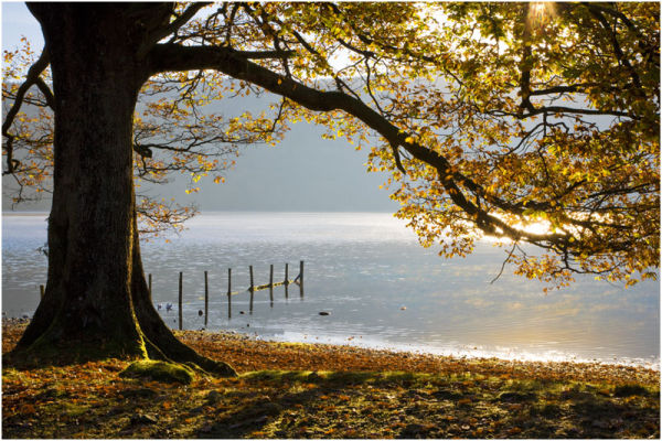 Coniston Water 10