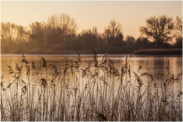 Gloucestershire Cotswold Water Park 15