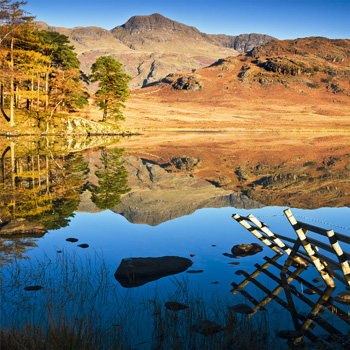LD_08 Morning Reflection