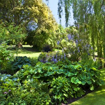 WG_12 The Priory Garden