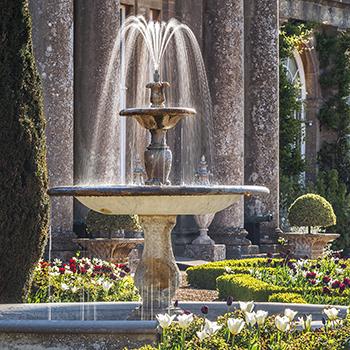 WG_14 The Fountain