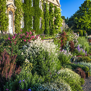 WG_21 Herbaceous Border