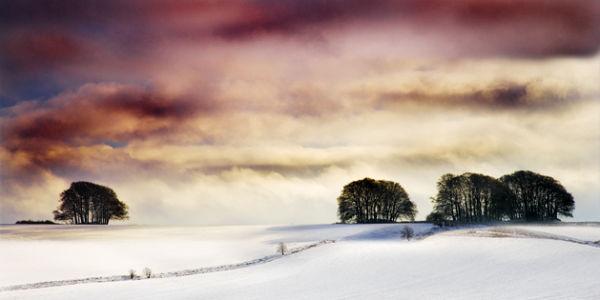 PWL_06 A Winter's Tale