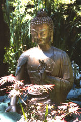 seated buddha with hand mudras