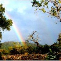 Rainbow over Cerro