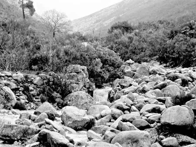 Serra de Estrela fisrt snow