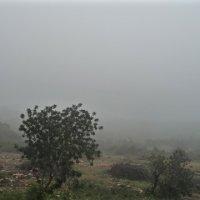 Sesimbra Weather