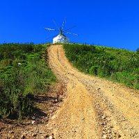 Windmill Road