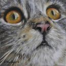 Purr-lease  (Sold)