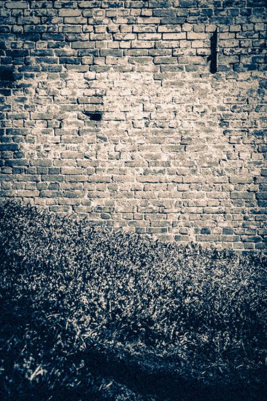The Brickwall