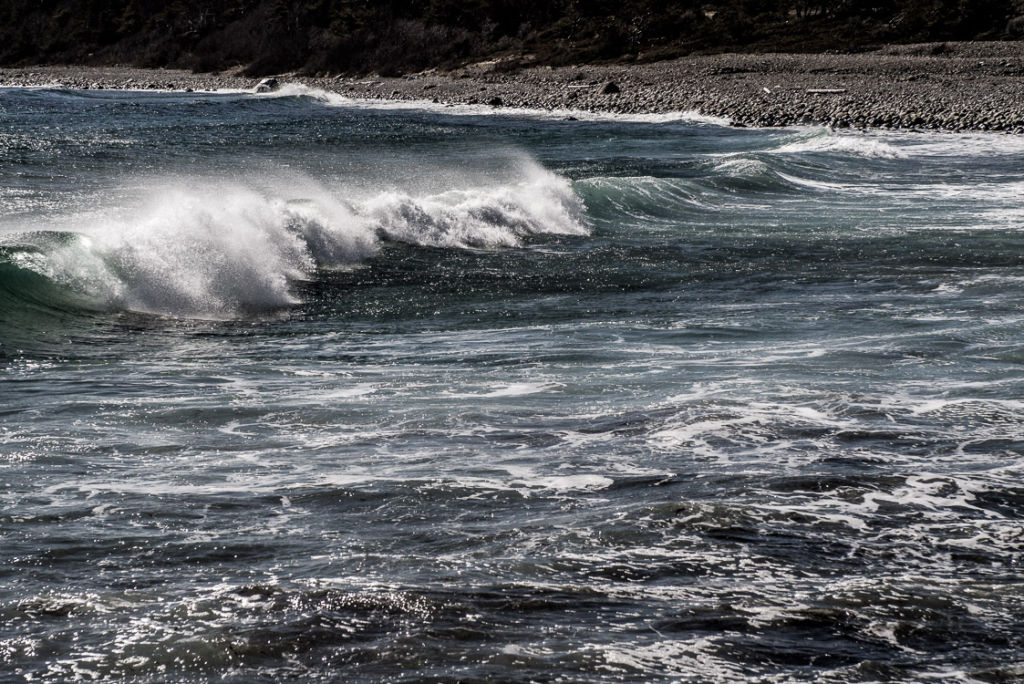 Waves in Wind