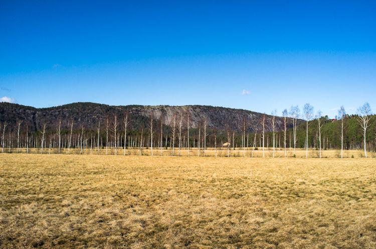 Camp at Åmli