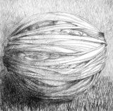 Bundle Drawing 5