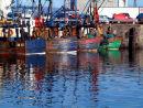 Fishing boats reflect.