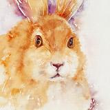 Caramel Candy Hare