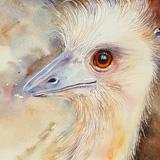 Fair Maiden Emu
