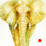 Green n Gold Elephant