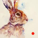 Sugar Sweet Hare