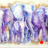 The Blues_Elephant Family