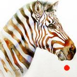 Umber Earl Zebra